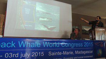 La región estuvo presente en el primer congreso sobre ballenas jorobadas