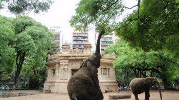 La Legislatura porteña comienza a debatir el futuro del zoológico porteño