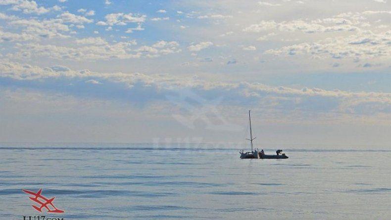 Una ballena golpeó y rompió parte de un velero