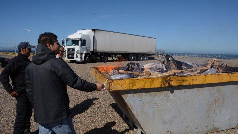700 kilos de corderos y capones fueron incinerados en el recinto del puerto Caleta Paula.