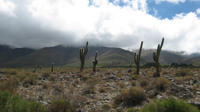 Amaicha tiene un paisaje árido de una belleza única