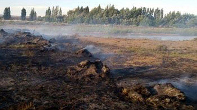 Sofocaron un incendio de pastizales en el barrio Industrial