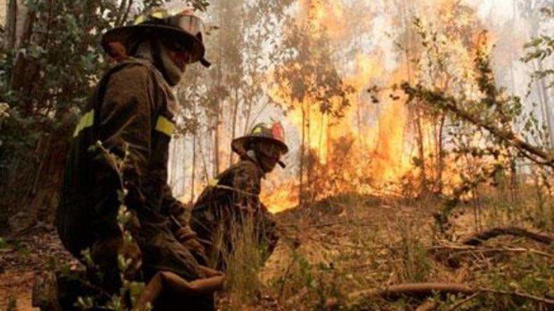 El CENPAT crea un sistema de evaluación de los incendios