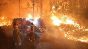 El fuego en el parque provincial Río Turbio no les da tregua a los brigadistas.