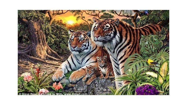 ¿Cuántos tigres ves en esta foto?