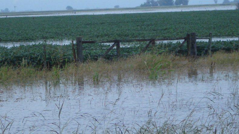 Los campos anegados retrasan las tareas agropecuarias.