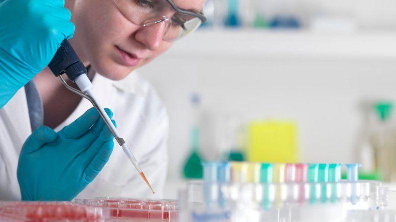 Afirman haber creado un nuevo tipo de células madre