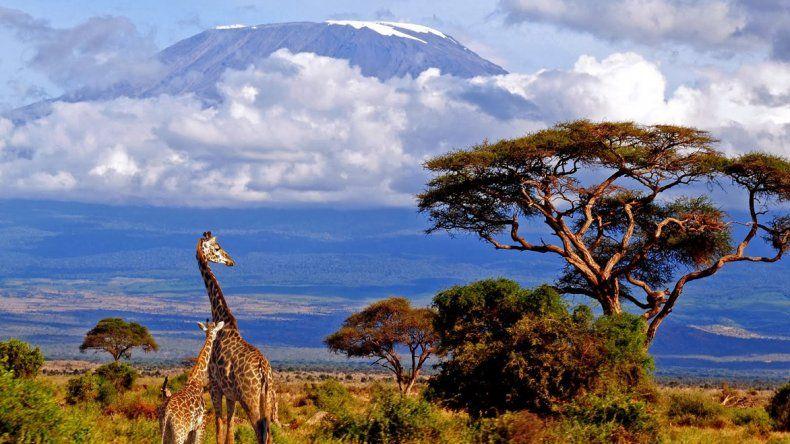 Kilimanjaro: un abanico de  paisajes envuelto en nubes