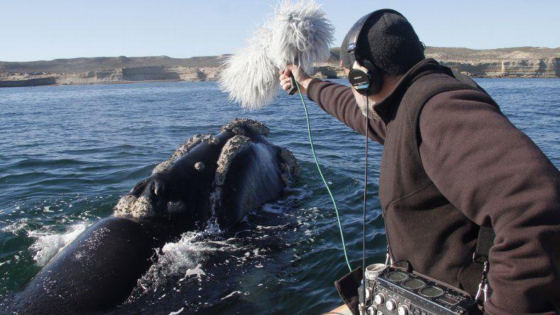 Ya tiene fecha de estreno El Faro de las Orcas