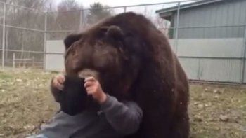 Abrazo del oso: Mirá lo que le pasó a este cuidador
