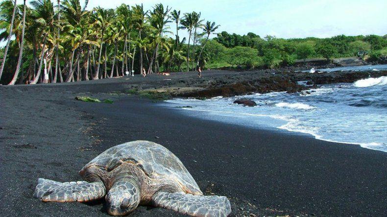 Las coloridas  playas de Hawái