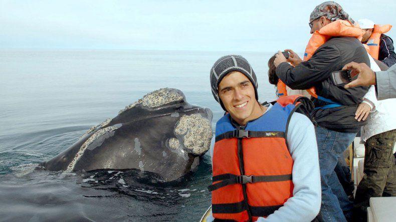 Temporada de avistaje de ballenas y fauna marina  en Río Negro