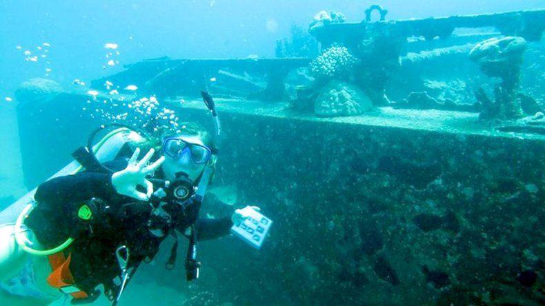 Una zambullida por el Beagle: viaje al fondo marino subantártico