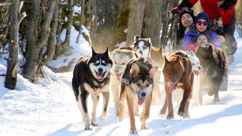 Valle de Lobos: aventura animal todo el año