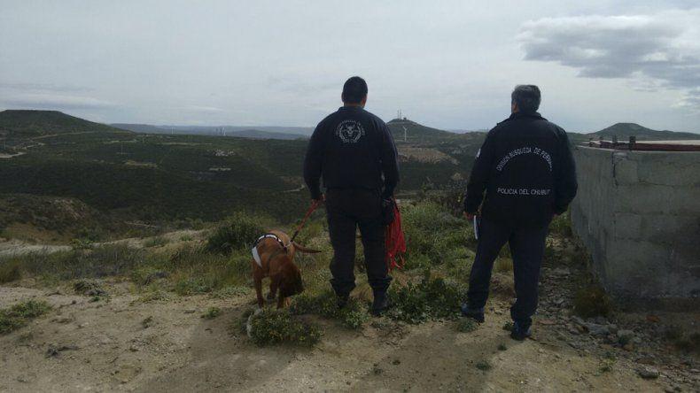 El perro rastreador Zeus ayer había marcado el recorrido que hacía habitualmente Campos entre los cerros.