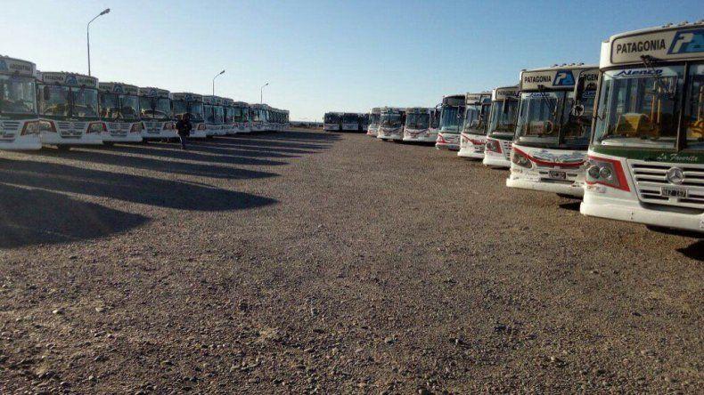 No circulan colectivos de Patagonia Argentina por una medida de fuerza