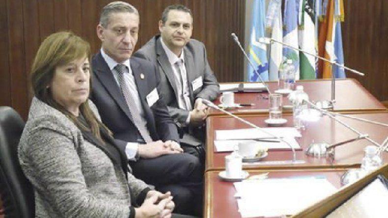 La diputada Alejandra Marcillla adelantó la presentación de un proyecto para frenar el ingreso de la carne porcina del norte.