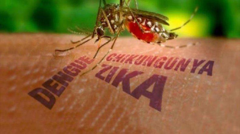 Extreman las medidas de seguridad frente al zika.