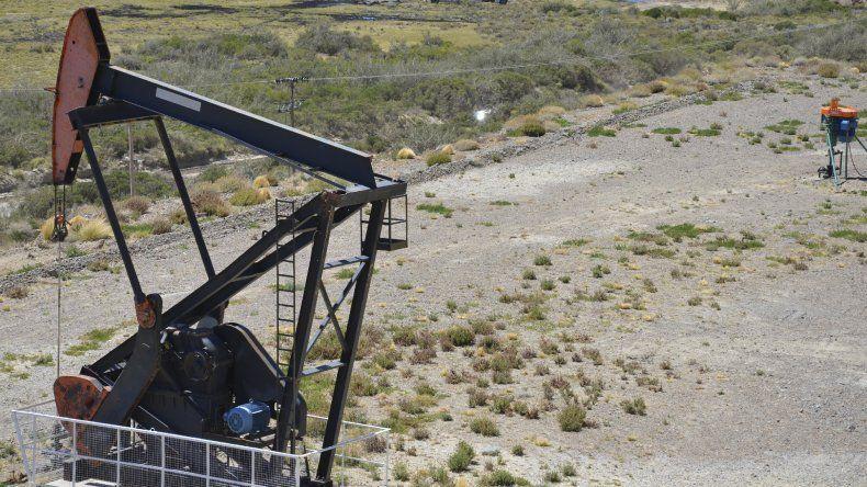 A contrarreloj, Chubut lucha por conservar el Barril Criollo