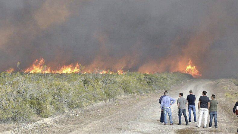 El  incendio avanzaba anoche hacia el sector norte de Península Valdés