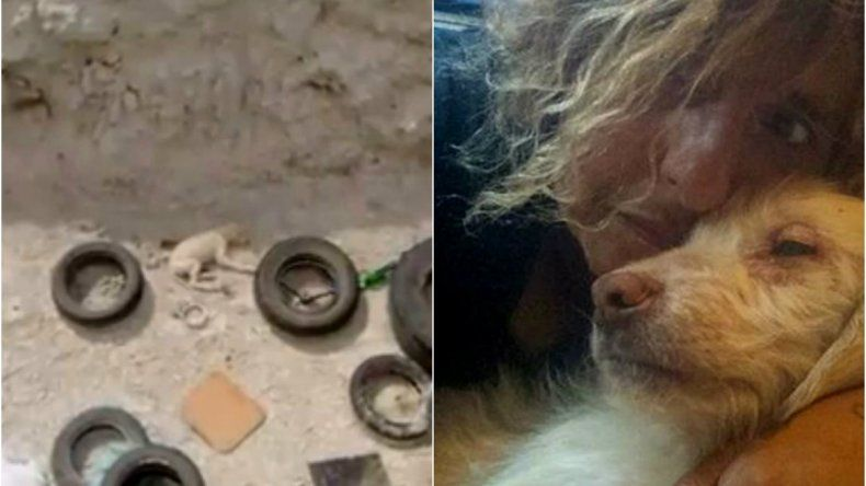 Rescató a una cachorra que sobrevivió varios días en un basural