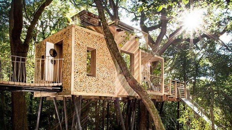La casa del árbol más lujosa del mundo está en Inglaterra