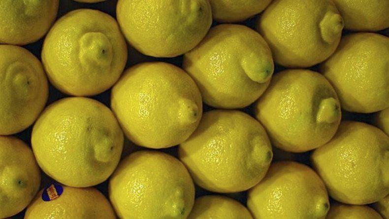 Complican a productores de limón las medidas proteccionistas de EE.UU.