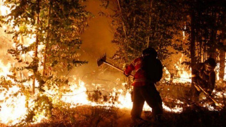 Chile sufre el peor incendio de su historia: Argentina enviará más de 100 brigadistas