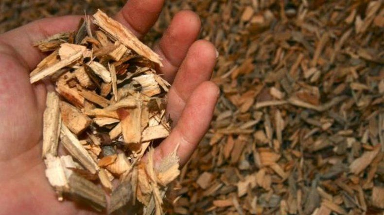 Chubut impulsa el uso de biomasa para producir energía térmica