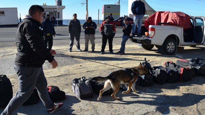 Detienen a un pasajero de colectivo que ocultaba droga