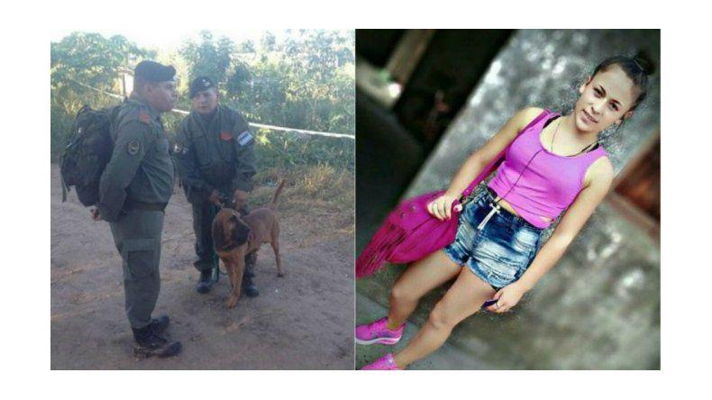 Uno de los perros que busca a Daiana halló ropa con manchas de sangre