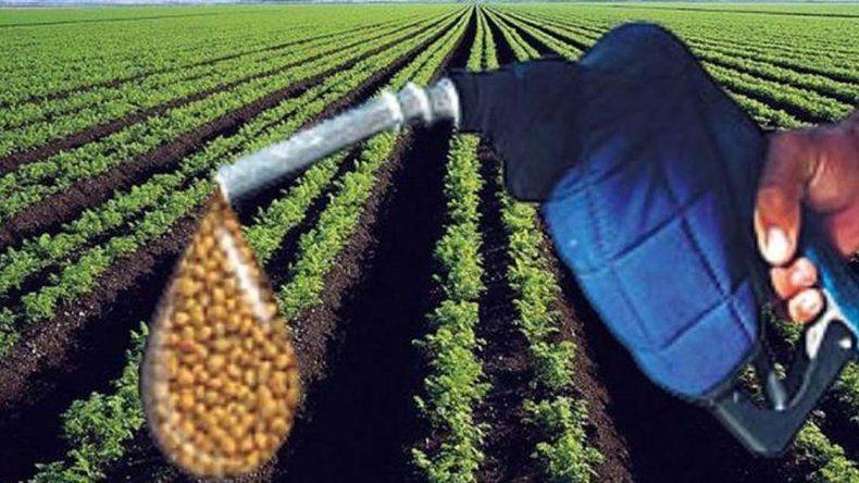 Las demanda interna de biocombustibles creció durante el primer trimestre del año.