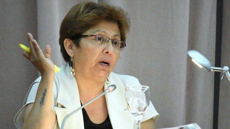 La diputada Navarro fue quien presentó el proyecto y detalló sus pormenores.