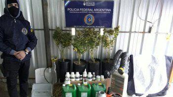El habitante de la calle Vélez Sarsfield se dedicaba al cultivo y posterior venta de flores de marihuana.