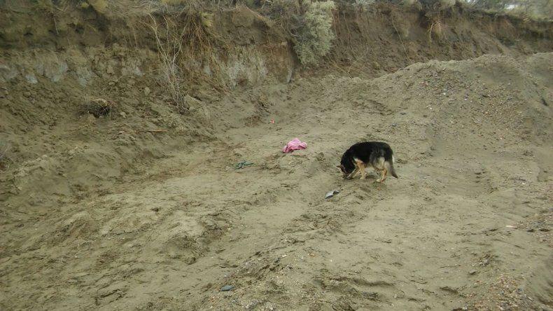 Encontraron sin vida a Pedro Bayón en el ingreso a Los Arenales