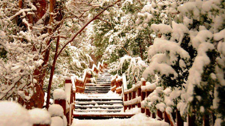Los Arrayanes se convierte en un verdadero paisaje de cuentos de hadas en invierno.