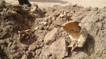 Hallan restos humanos y sospechan que podrían ser de desaparecidos