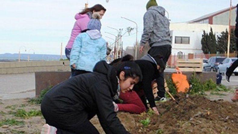 Alumnos de cuatro establecimientos educativos sembraron plantines en canteros de la costanera caletense.
