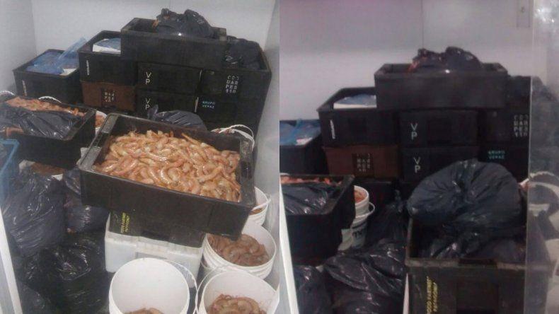 Secuestraron más de una tonelada de langostino en Camarones