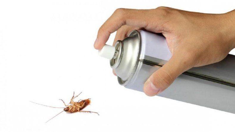 La Anmat prohibió la venta y el uso de un insecticida