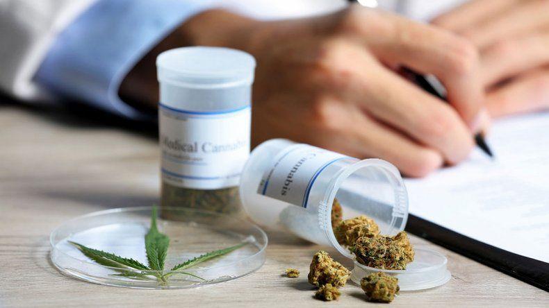 La reglamentación autoriza al Conicet y al INTA a cultivar cannabis con fines de investigación médica o científica para la elaboración de la sustancia como medicamento.