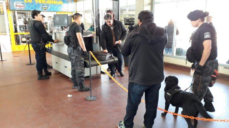 Hallaron 4,8 kg. de cocaína en la terminal de ómnibus