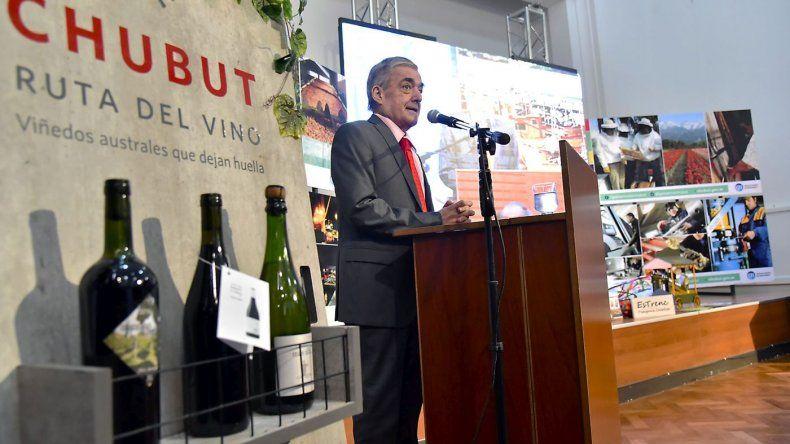 Con la ley vitivinícola se abren posibilidades de crecimiento