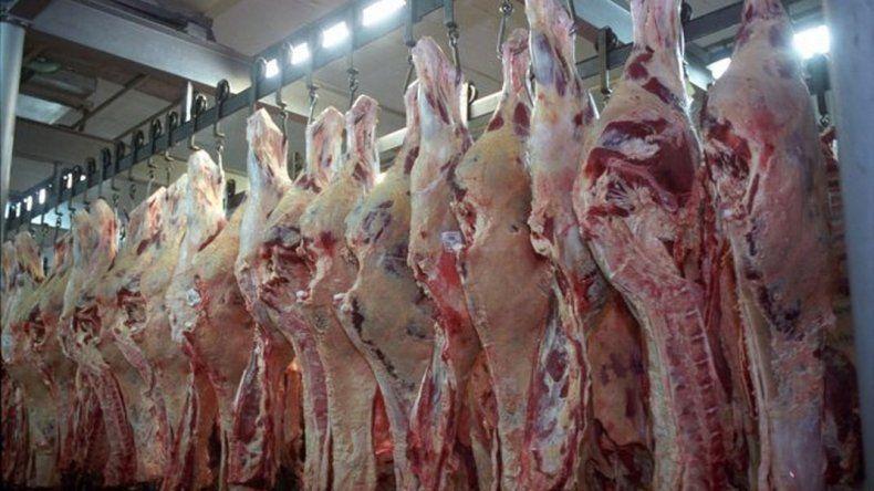 En Esquel, el 50% de la carne es clandestina