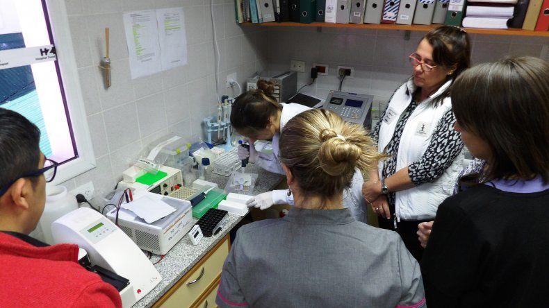 Chubut tendrá el primer laboratorio de la Patagonia para detectar Hantavirus