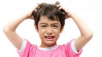 pediculosis: como prevenirla y combatirla
