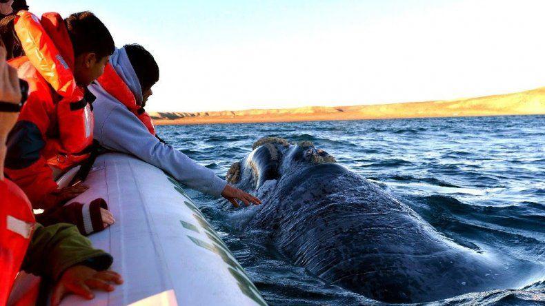 Nación recortará el presupuesto para el turismo de Chubut