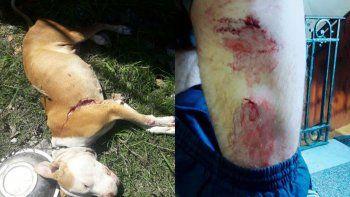 la violaron, apunalaron a sus hijos y mataron a su perro