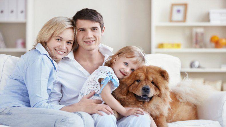 Sostienen que adoptar un perro podría alargar la vida