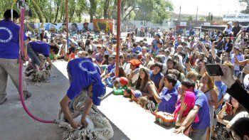 el festival nacional de la esquila comienza esta tarde en rio mayo